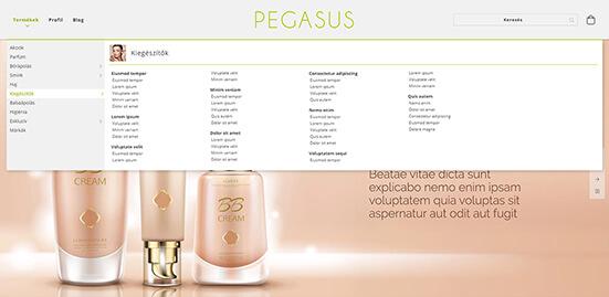 Pegasus 1
