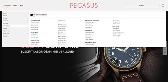 Pegasus 3